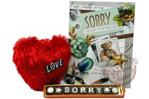 Sorry Chocolate Message with Greeting Card and Heart Shape Cushion